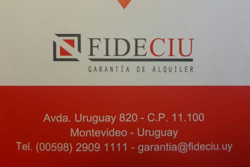 e42195ed-5b1f-40ac-a7fb-1f51d5663ca8-1024x693