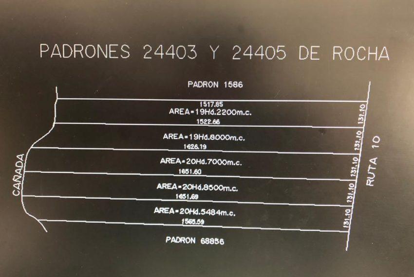 6dd55821-6f26-4706-9a65-776f2acbf617